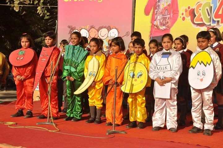 Chamanlal DAV Senior Public School-Activity