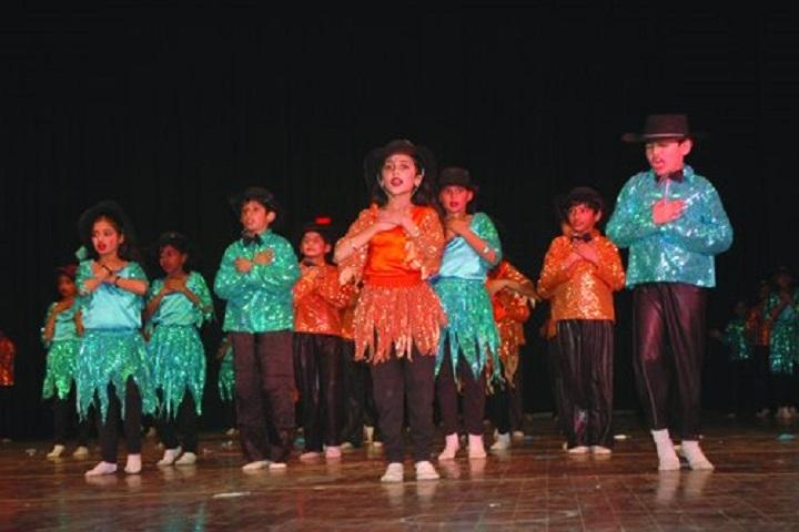 D A V  Public School-Annual-Day