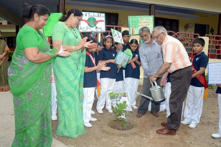 D A V  Public School-Plantation