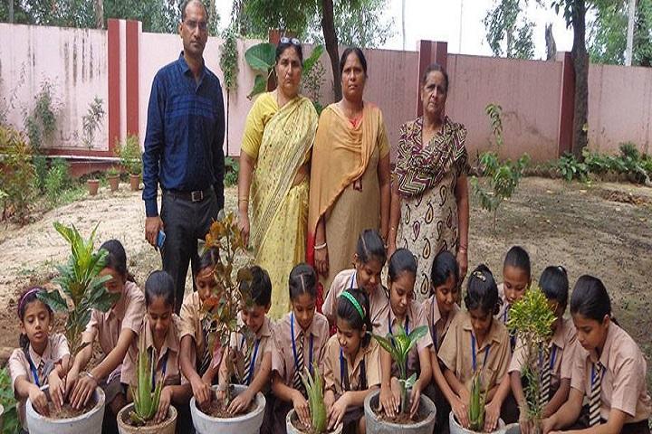 D A V Centenary Public School-Plantation
