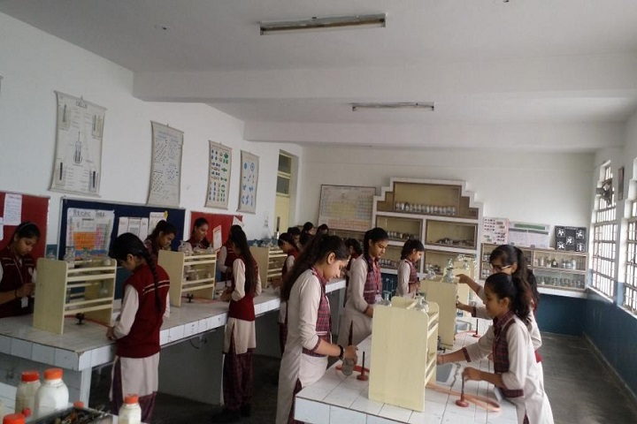D A V Centenary Public School-Lab