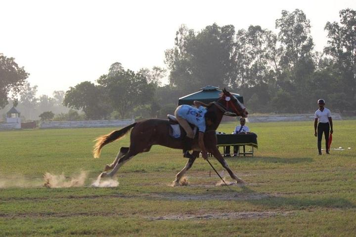 D A V Public School-Horse Riding2