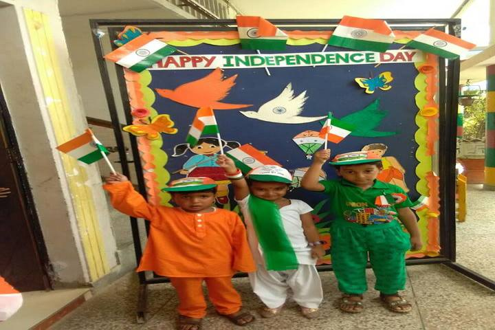 D C Model Senior Secondary School-Independence Day Celebrations