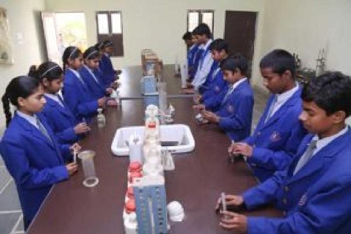 D S Arya Senior Secondary School-Science laboratory