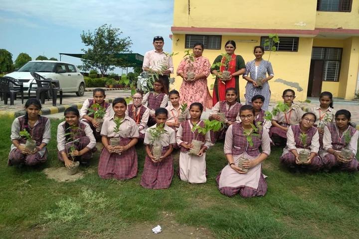 DAV Centenary Public School-Plantation