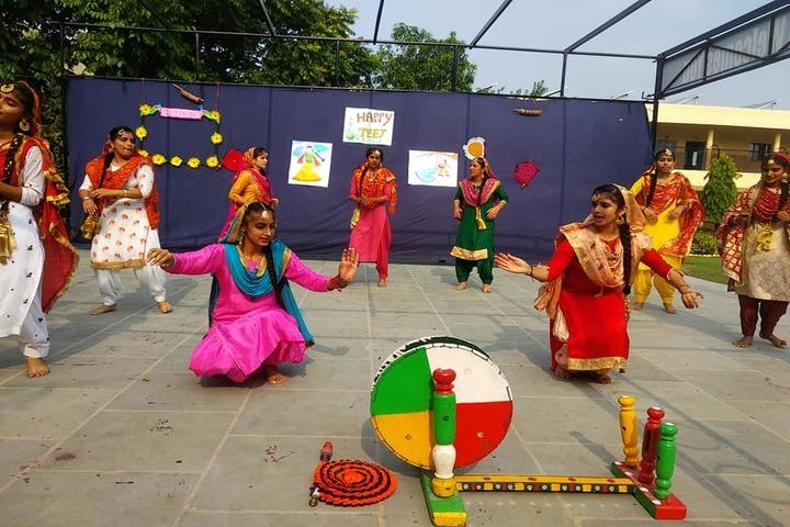Dav Senior Secondary Public School-Celebrations