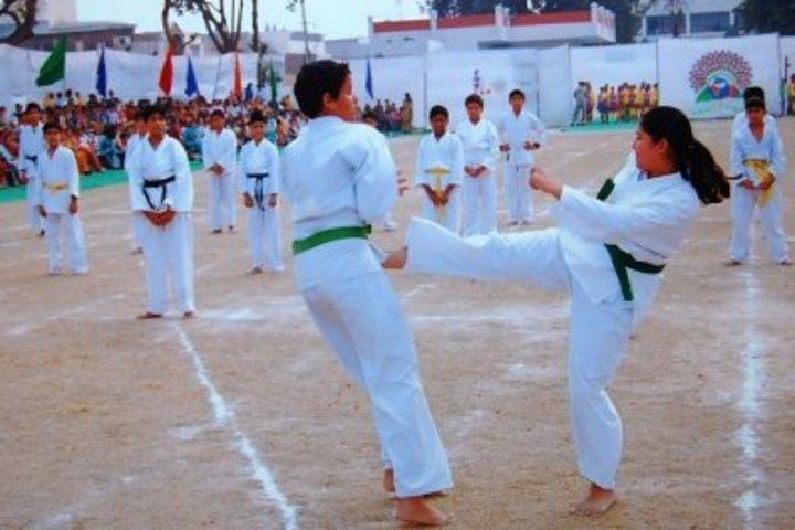 Dayal Singh Public School-Karate