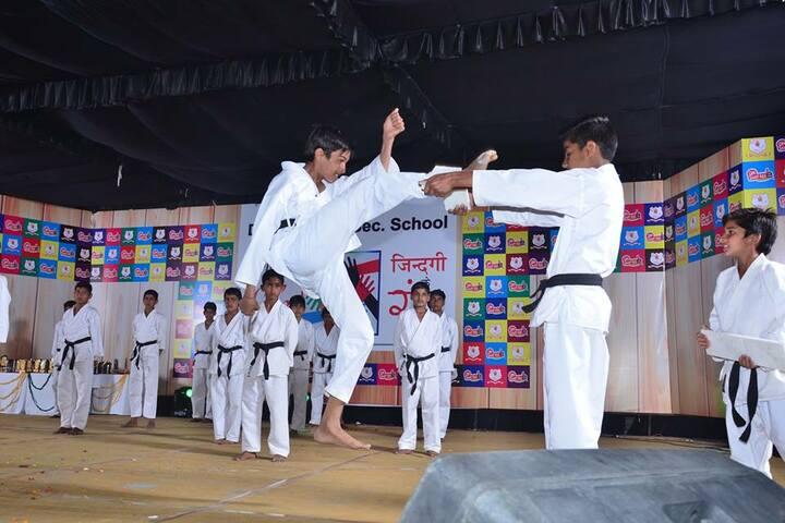 Dayanand Senior Secondary School-Karate