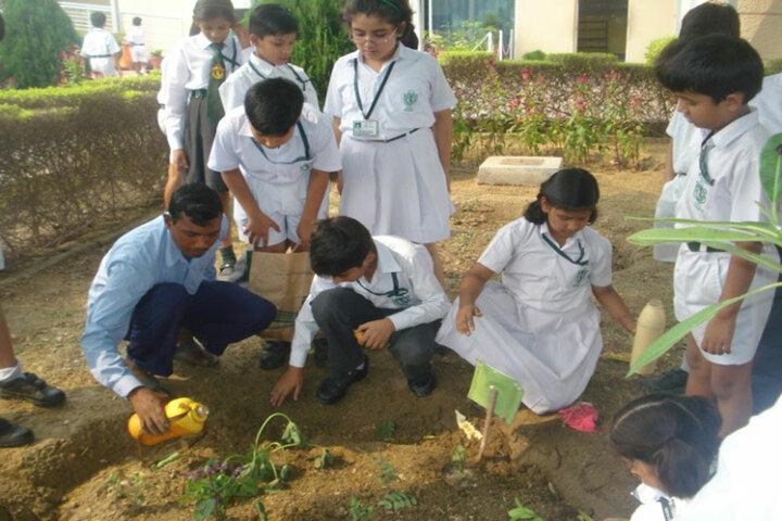 Delhi Public School - Tree Planting