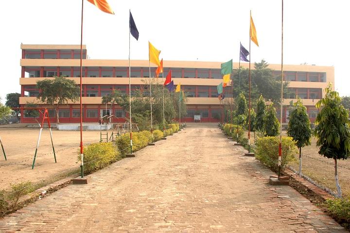 Dewan Bal Krishan Public School-Campus