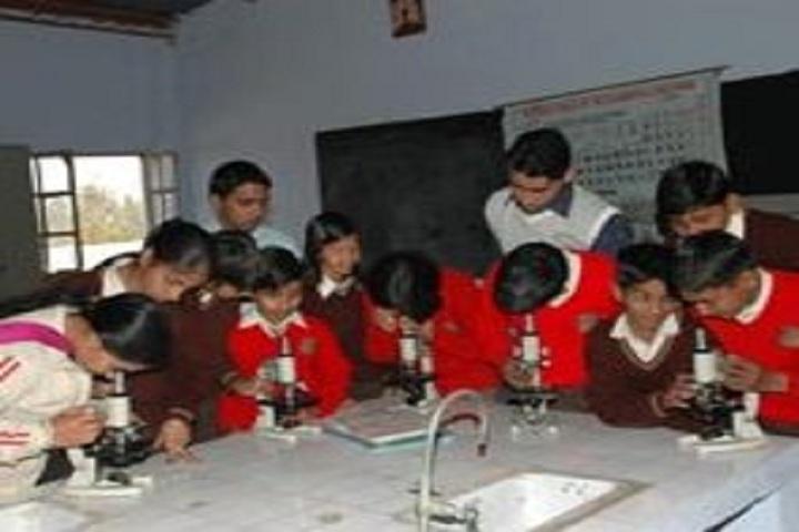 Dewan Bal Krishan Public School-Chemistry Lab