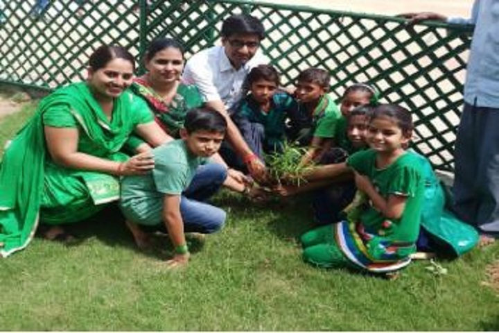 Gopal Vidya Mandir Senior Secondary School-Plant a Tree