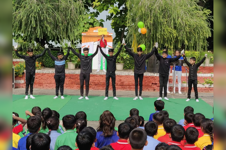 Greenfields Publc School- Activity