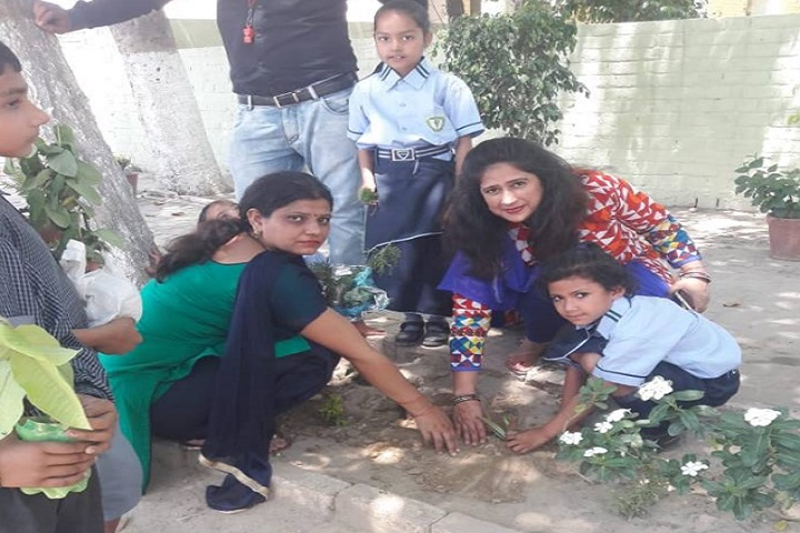 Greenland Public School-Plantation