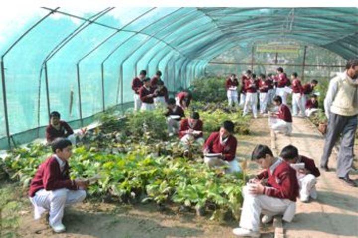 Gurukul-Nursery