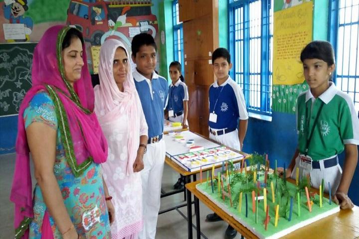 H D Public School-Exhibition