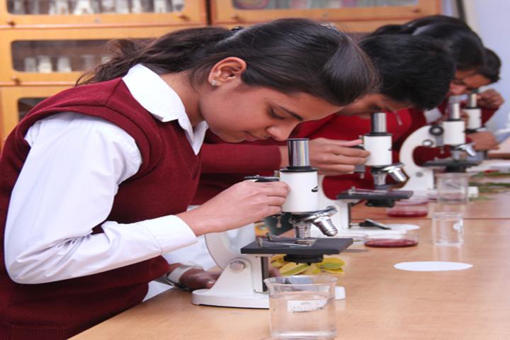 Happy Evergreen Senior Secondary School-Lab