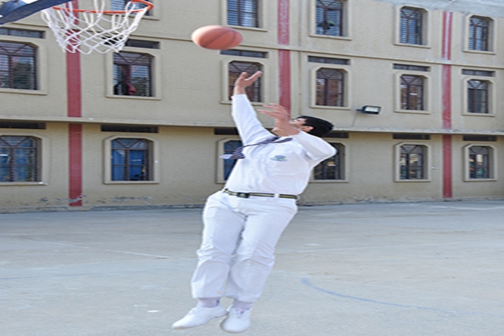Hardayal Public School-Basketball Court