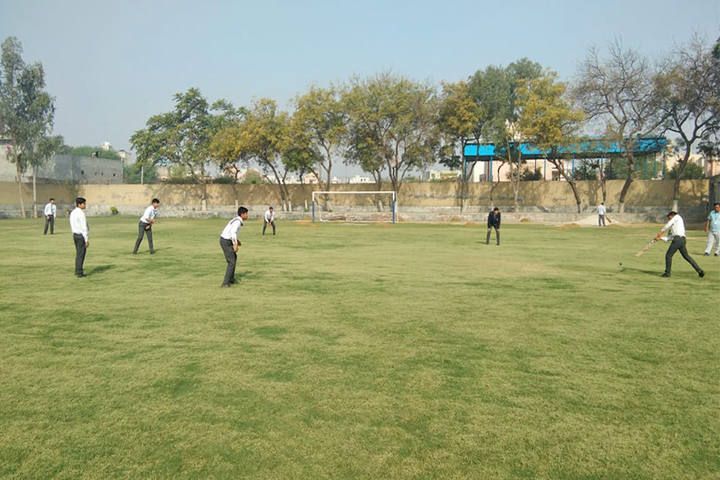 Hardayal Public School-Playground