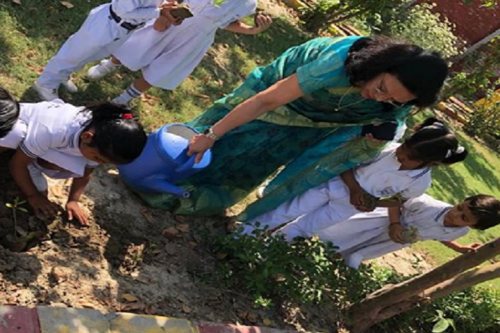 Indira Gandhi Public School-Plantation