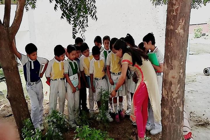 Jkp International School-Plantation