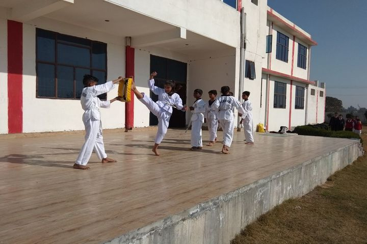 Katar Singh Memorial Public School-Taekwondo