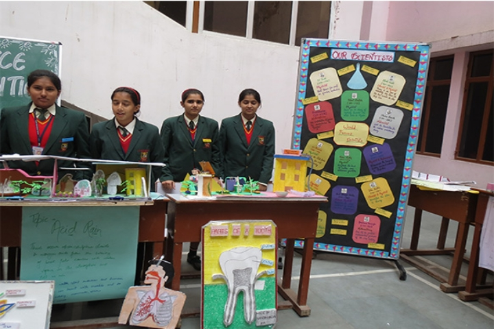 Science Exhibition View of Laxmi International School Manesar