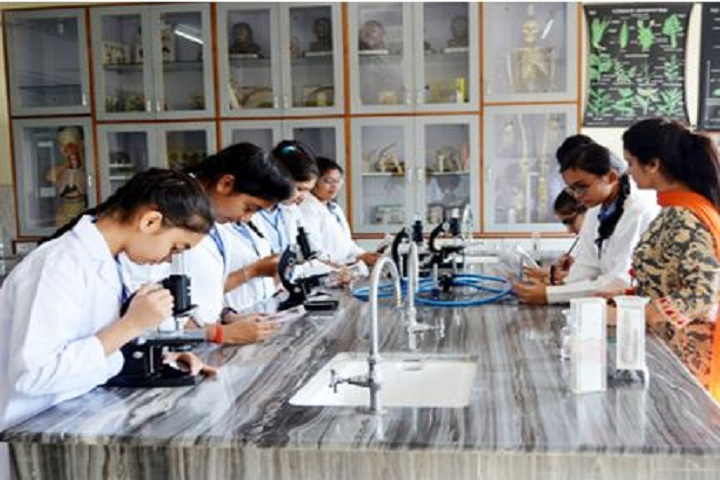 Lion Public School-ChemicalLab