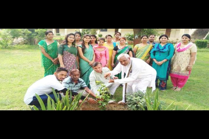 Maharishi Vidya Mandir Public School- Gurugram- Tree Plantation