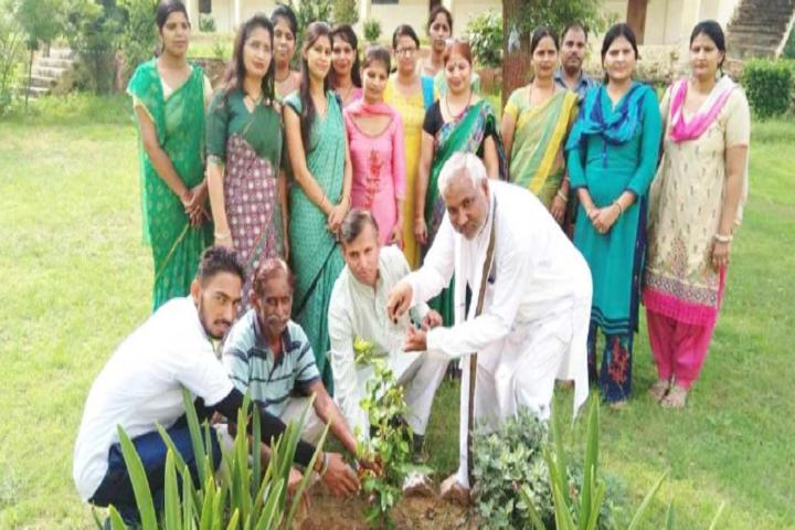 Maharishi Vidya Mandir Public School-Plantations
