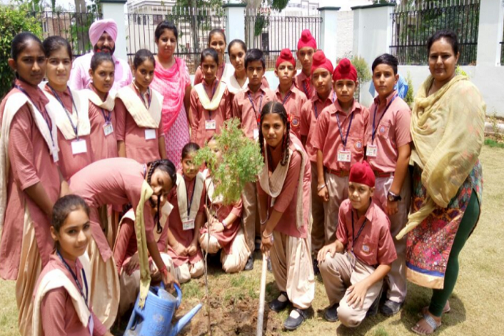 Mata Gujri High School-Tree Plantation