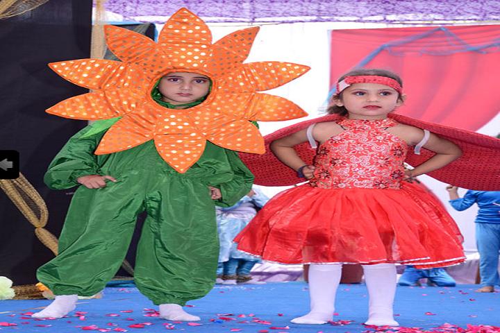 New Happy Public School Bilaspur-Activity