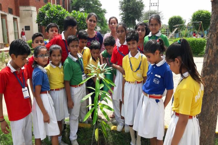 Pathfinder Global School-Tree plantation