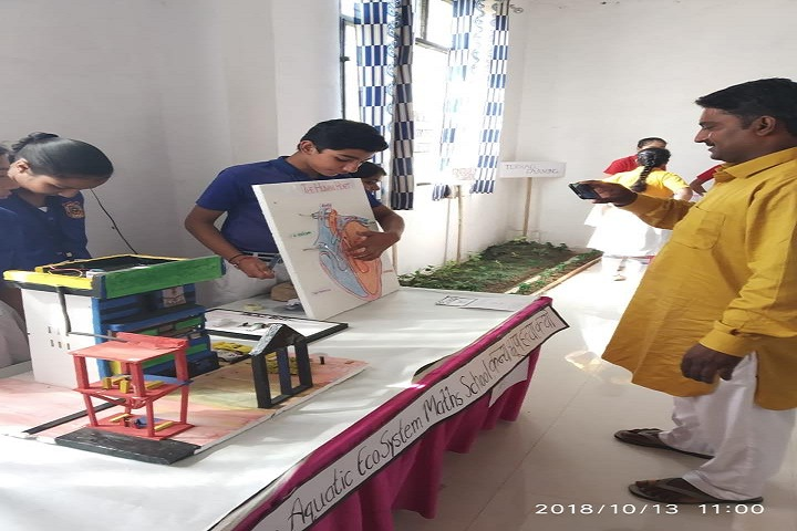 Pratap Public School-Exhibition