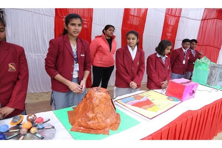 Rao Bane Singh Memorial High School-Science Exhibition