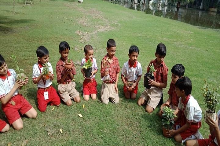 Rose Land Public School-Tree Plantation