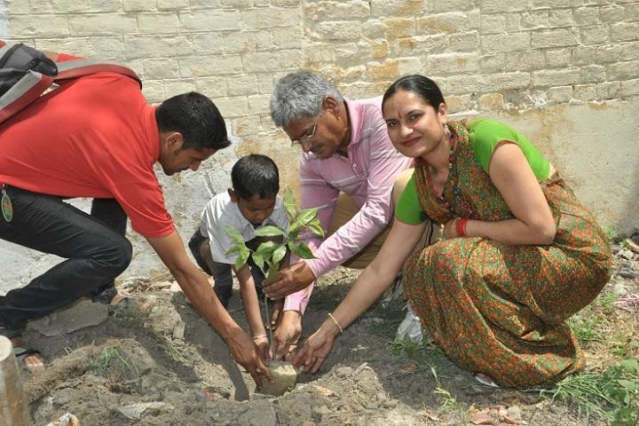 S D Maruti Nandan Vidya Mandir-Tree Plantation