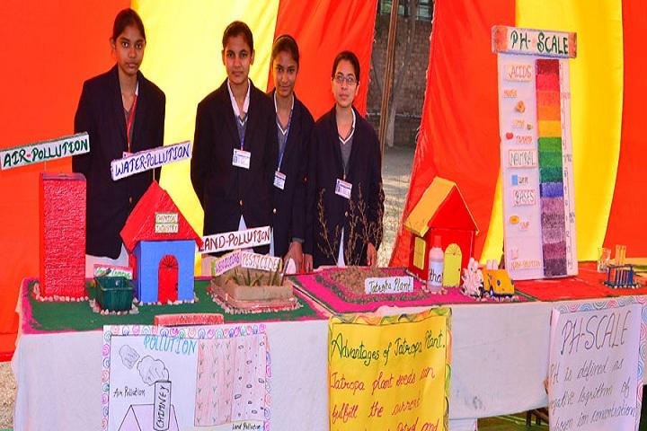 S M S Memorial Public School-Science Exhibition