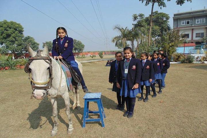 Saint Vivekanand International School-Horse Riding Activity