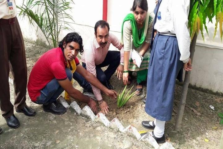 Sanskar International School-Tree Plantation Day