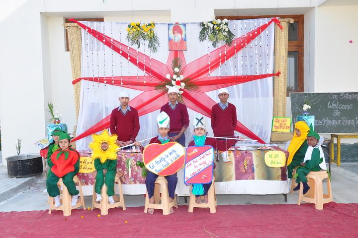Sant Nikka Singh Public School-Activity