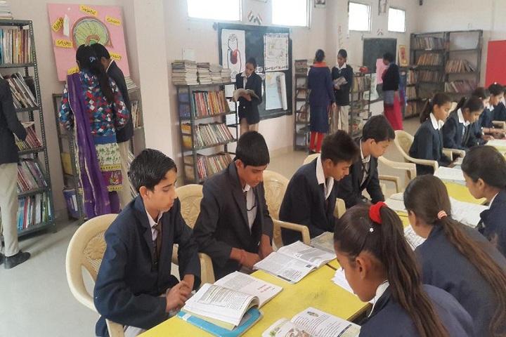 Shaheed Amar Singh Public School-Library