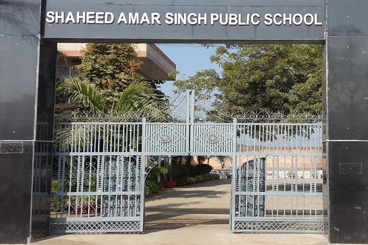 Shaheed Amar Singh Public School-School Entrance