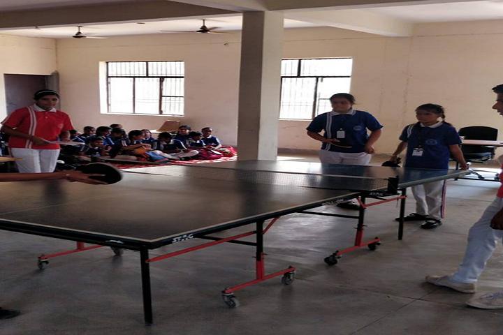 St Luke Convent School-Indoor Games