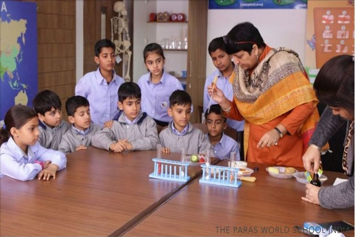 The Paras World School India-Science lab
