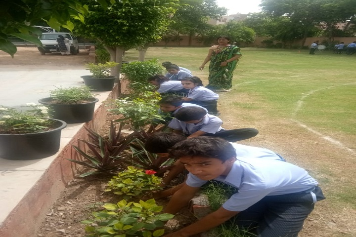 Vivekanand Global School-Plantation