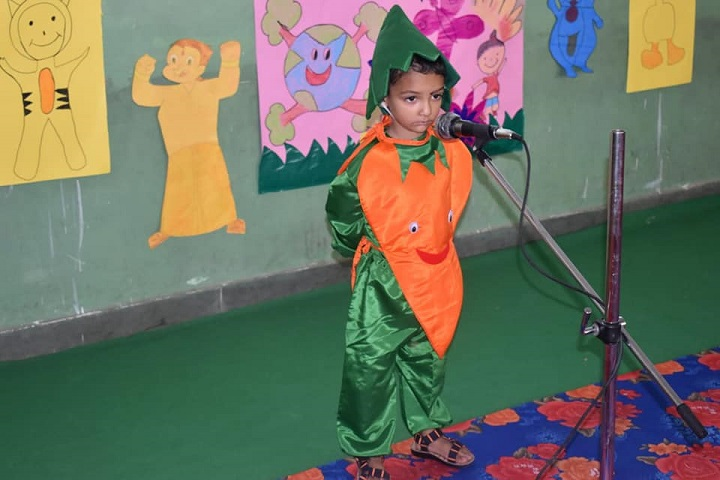 DAV Ambuja Vidya Niketan Public School-Fancy Dress