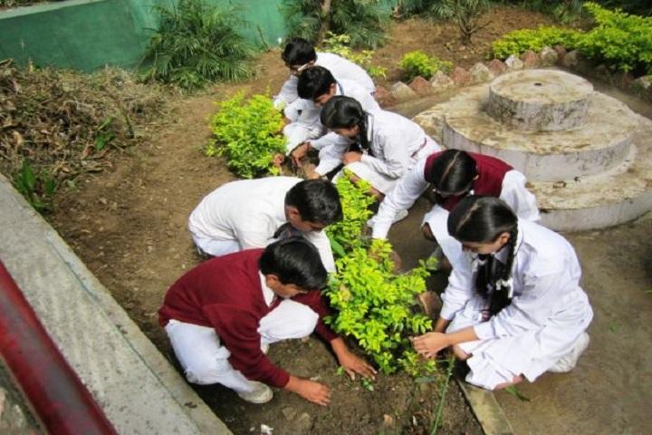 Bhagirathi Dass Dav Public School-Planting Tress