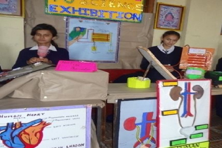 Central School For Tibetans-Science Exhibition