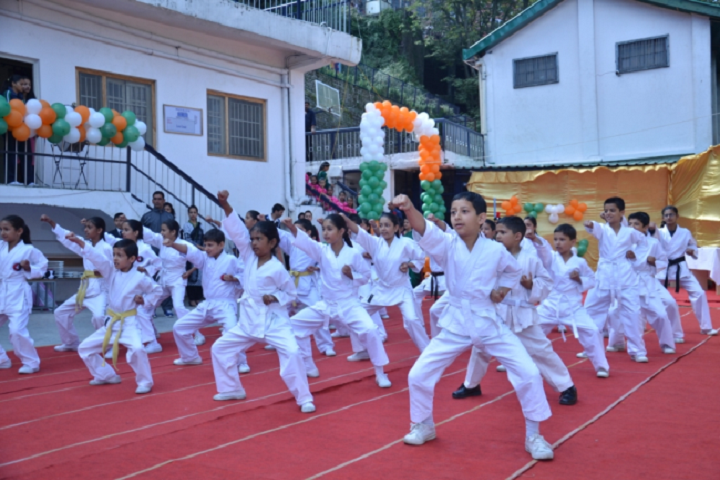 D A V Senior Secondary Public School-Karate